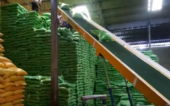 MMC Stacking Conveyor rice bags in Assam India